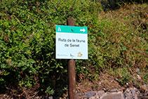 Senyalització de la Ruta de la Fauna de Senet.
