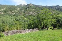 Zones de pastura.