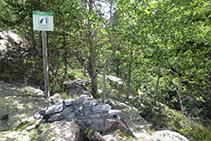 Font de la Cova del Sardo.