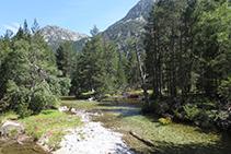 Aigüestortes: el riu de Sant Nicolau avança pausadament entre prats i boscos.