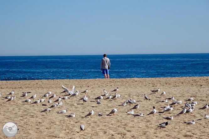 Ruta de les ermites de Lloret de Mar 1