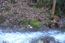 Font de Canemassos a l´altra costat del riu del Cantó.
