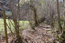 Senyal vertical: continuem ara pel camí que creua la vall.