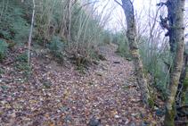 El camí puja uns metres en direcció SO.
