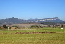 Cingles de Sant Roc des del pla del Pasteral.