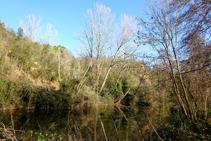 El riu Brugent.