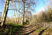 Camí al costat del Brugent.