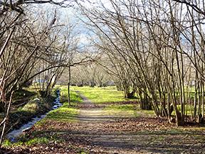 Ruta Voramera i Via Verda a Amer
