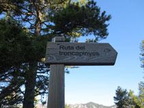 Senyal indicadora de la Ruta del Trencapinyes.