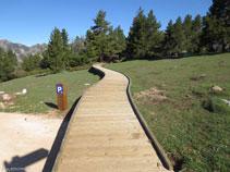 Pasarel·la de fusta adaptada per a persones amb mobilitat reduïda.