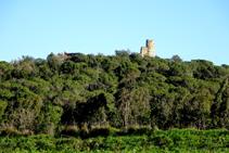 Restes del castell de Sant Iscle.