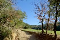 Camps de conreu prop de Can Morell.