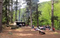 Àrea de pícnic del Pla d´en Xurri.
