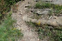 Marques grogues que hi ha al punt on deixem la pista i agafem un corriol.