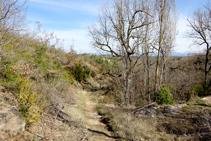 El camí, al costat de la font del Bisbe.