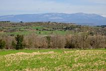 Vista del massís del Port del Comte i la serra del Cadí.