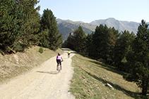 Camí de la solana cap a Montgarri.