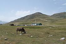 Pastures al pla de Beret.