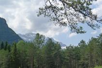 Vista cap a l´O: massís del Mont Perdut.