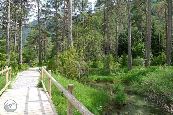 Sender accessible del Cornato a la vall de Pineta 1