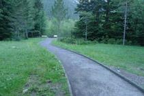 Avancem per entre boscos i prats.