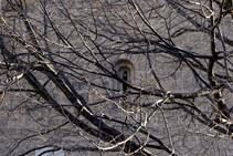 Brancam i finestra de l´església de Sant Martí.