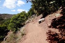 El camí a Mencui.