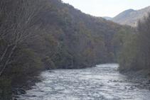 El riu Noguera Pallaresa, abraçat per un bonic bosc de ribera.