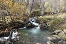 El frescal riu de Sant Antoni.