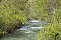El riu Valira al seu pas per Aixovall.