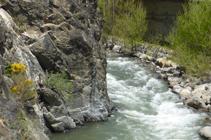 Més avall el riu s´estreny al passar pel costat d´un sortint rocós.