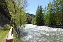 Bosc de ribera al passeig Valira.