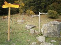 Les senyalitzacions ens indiquen el camí per arribar fins a la cascada de Pomèro.