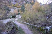 Pont de Sessana.