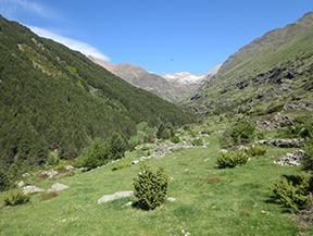 Vall de Riq�erna i cam� de Rus des de Capdella