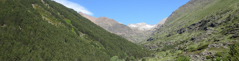 Vall de Riqüerna i camí de Rus des de Capdella