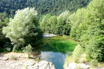 Les aigües verdes del Llobregat.