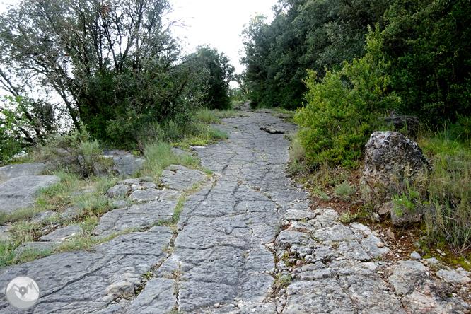 Via Verda de Cal Rosal a Pedret 1