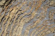 Detall de les boniques formes que fa la roca.