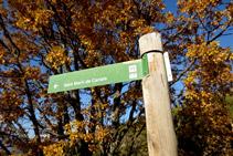 """Senyalització vertical """"Sant Martí de Canals""""."""