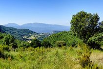 Les vistes cap al Montseny des del serrat de Sant Corneli.